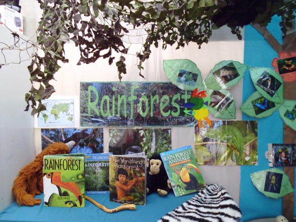 Year 2 Rainforest Topic Display